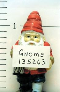 gnome-prank